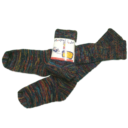 Pure Wool Socks - Multi Coloured